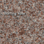 MorningRose12_300x300